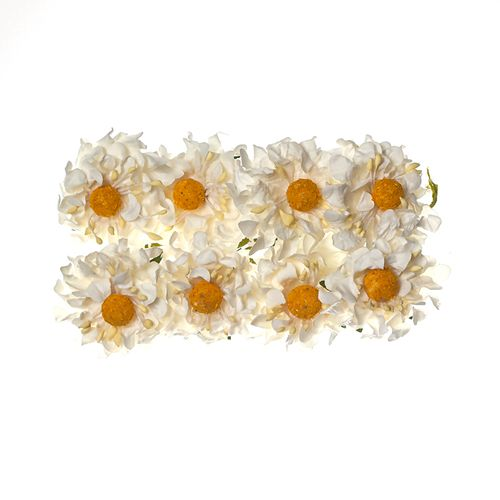 Paper Flowers - Camomile White (8 Pieces Per Pack)
