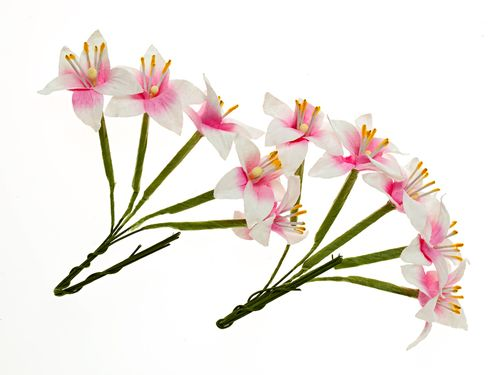 Stemmed Lily 10 pcs in a pack WHITE&PINK