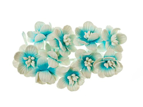 Cherry Blossom (10 piece set) Blue & White