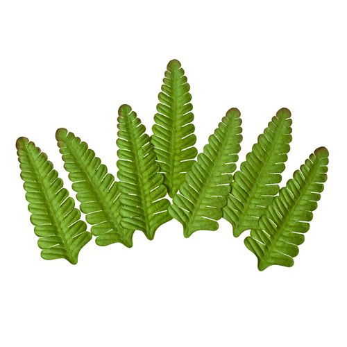 Set of Leaves (7 Pieces per pack) Fern