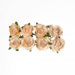 Paper Flowers – Rose – Peach, (8 Pieces Per Pack)