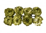 Paper Flowers - Curly Rose – Green (8 Pieces Per Pack)