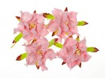 Gardenia 5cm 4 pcs in a pack LIGHT PINK