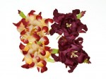 Gardenia 5cm 4 pcs in a pack BORDEAUX/CREAM&BORDEAUX