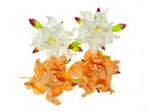 Gardenia 5cm 4 pcs in a pack PEACH/WHITE