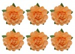 Tea roses' flowers, -18 mm diameter, 6 pcs, beige