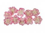 Cherry Blossom (10 piece set) Pink & White
