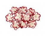 Cherry Blossom (10 piece set) White & Red