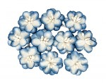 Cherry Blossom (10 piece set) White & Blue