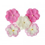 Pansies, a set of double flowers 5 pieces, pink