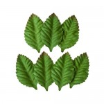 Set of Leaves (7 Pieces per pack) Small Rose Leaves